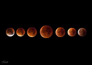 Månen Superblodmåne - Jörgen Tannerstedt - Astronet forum 9df57e87600e5