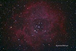 Rosette nebula - Peter Anderson - Astronet forum 9e4d401116cb5